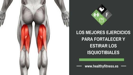 Ejercicios Isquiotibiales – Los mejores ejercicios para fortalecer y estirar
